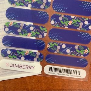 Jamberry Nov 2017 Hostess Exclusive Full Sheet